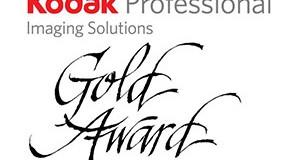 kodak gold awards 2013